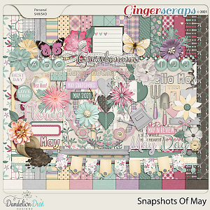 Snapshots Of May by Dandelion Dust Designs