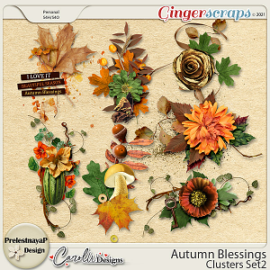 Autumn blessings Clusters Set2 by PrelestnayaP Design and CarolW Designs