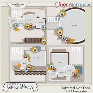 Tattered Not Torn - 12x12 Templates (CU Ok)