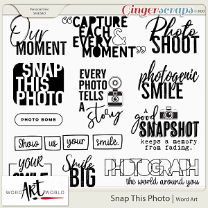 Snap This Photo Word Art