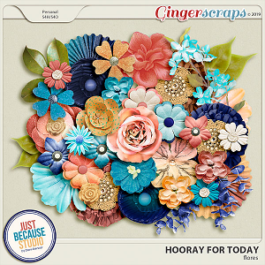 Hooray For Today Flowers by JB Studio