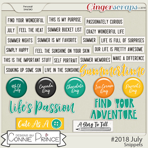 #2018 July - Snippets by Connie Prince