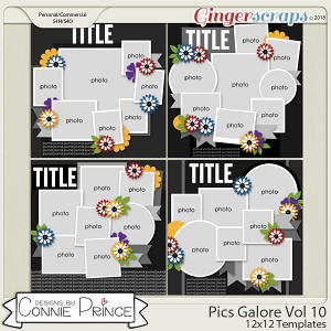 Pics Galore Volume 10 - 12x12 Temps (CU Ok) by Connie Prince