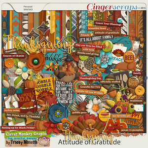 Attitude of Gratitude by Clever Monkey Graphics