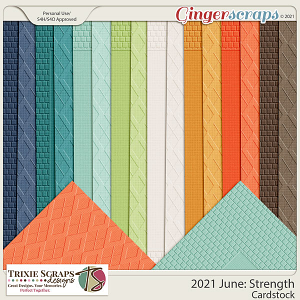 2021 June: Strength Cardstock by North Meets South Studios