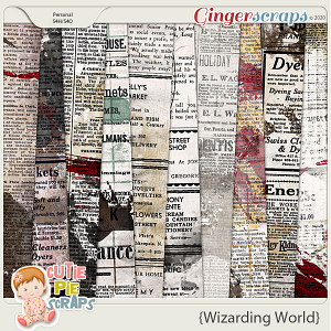 Wizarding World News Papers