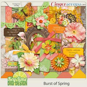Burst Of Spring