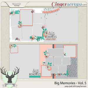 Big Memories Vol 5