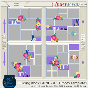 Building Blocks 2020 7 and 13 Photo Templates by Miss Fish