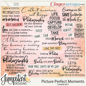 Picture Perfect Moments {Word Art}