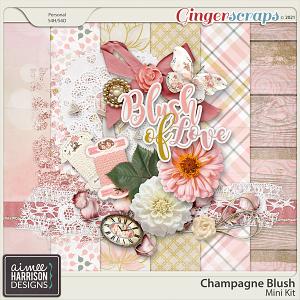 Champagne Blush Mini Kit by Aimee Harrison
