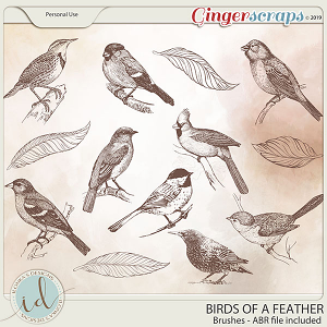 Birds Of A Feather Brushes by Ilonka's Designs