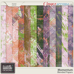 Momentum Blended Papers by Aimee Harrison