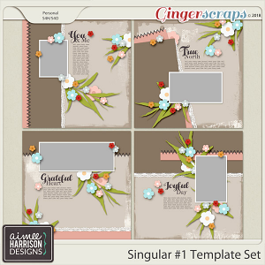 Singular #1 Templates Set by Aimee Harrison