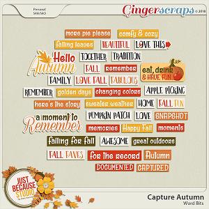 Capture Autumn Word Bits by JB Studio