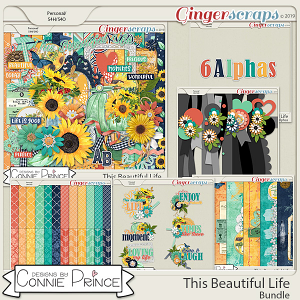 This Beautiful Life - Bundle by Connie Prince