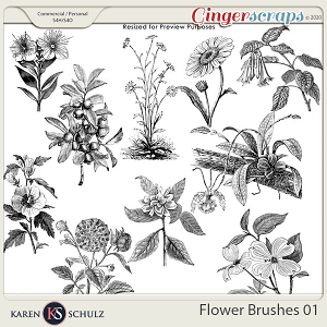 Flower Brushes 01 by Karen Schulz