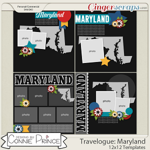 Travelogue Maryland - 12x12 Temps (CU Ok) by Connie Prince