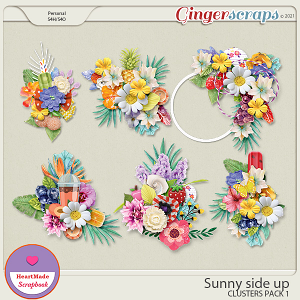 Sunny side up - clusters pack 1
