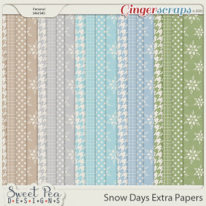 Snow Days Extra Papers