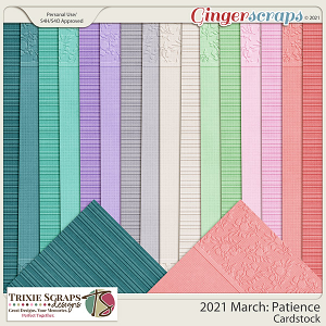 2021 March: Patience Cardstock by North Meets South Studios