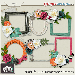 360°Life Aug: Remember Frame Clusters by Aimee Harrison
