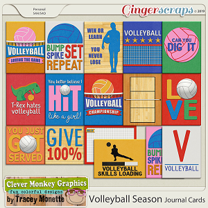 Volleyball Season Journal Cards by Clever Monkey Graphics