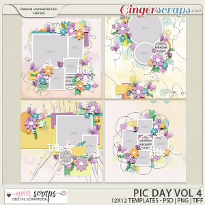 Pic Day - Templates VOL-4 - by Neia Scraps