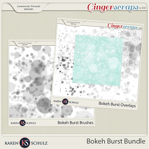 Bokeh Burst Bundle by Karen Schulz