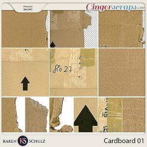 Cardboard 01 by Karen Schulz