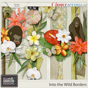 Into the Wild Borders by Aimee Harrison