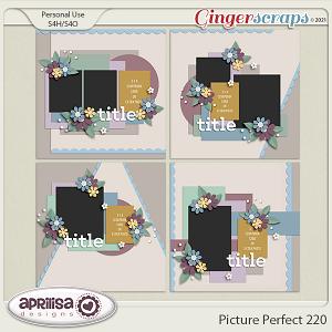 Picture Perfect 220 by Aprilisa Designs