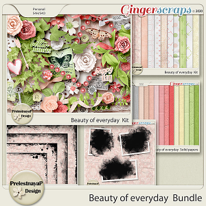 Beauty of everyday Bundle