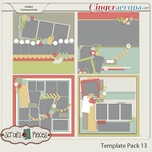 Template Pack 13