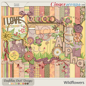 Wildflowers By Dandelion Dust Designs