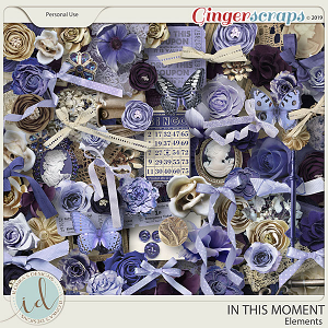 In This Moment Elements by Ilonka's Designs