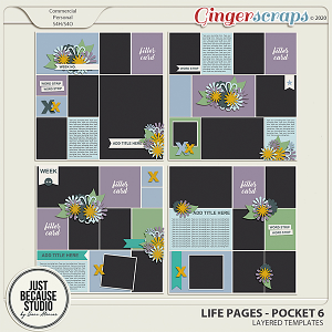 Life Pages Pocket 6 by JB Studio