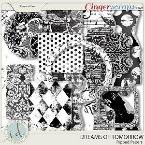 Dreams Of Tomorrow Ripped Papers by Ilonka's Designs