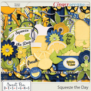 Squeeze the Day Kit