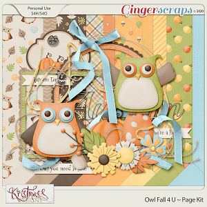 Owl Fall 4 U Mini Kit