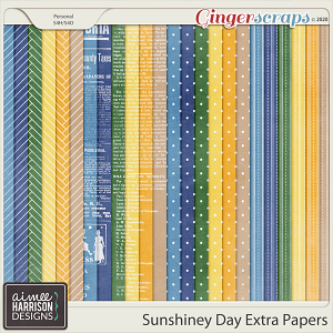Sunshiney Day Extra Papers by Aimee Harrison