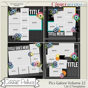 Pics Galore Volume 22 - 12x12 Temps (CU Ok) by Connie Prince