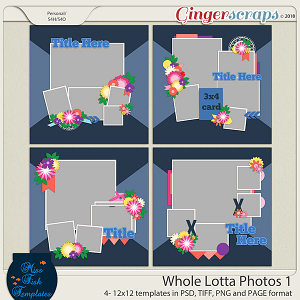 Whole Lotta Photos 1 Templates