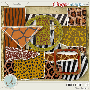 Circle Of Life Torn Papers by Ilonka's Designs