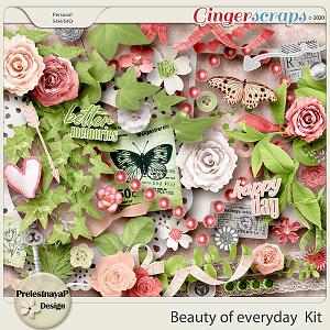 Beauty of everyday Kit
