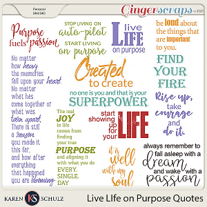 Live Life on Purpose Quotes by Karen Schulz