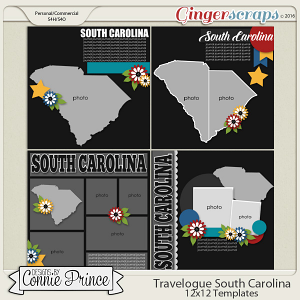 Travelogue South Carolina - 12x12 Temps (CU Ok)