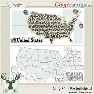 Nifty 50: USA-Individual