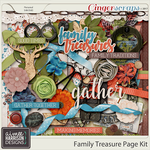 Family Treasure Page Kit by Aimee Harrison