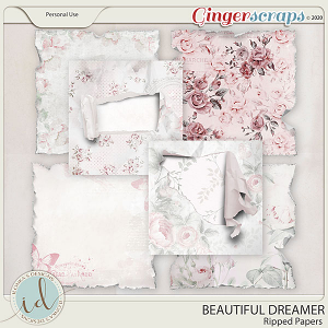 Beautiful Dreamer Ripped Papers by Ilonka's Designs